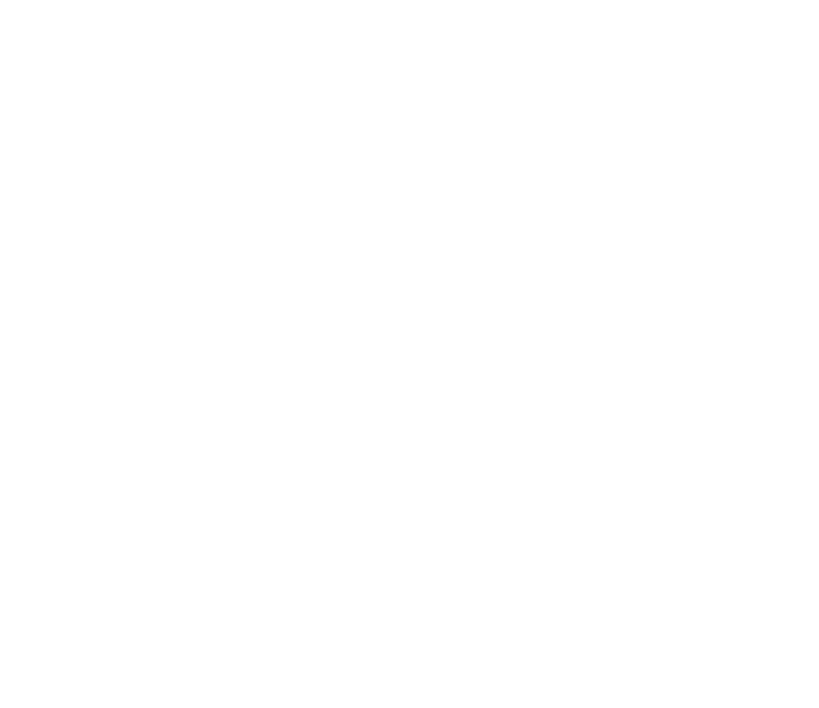 Association for Public Art