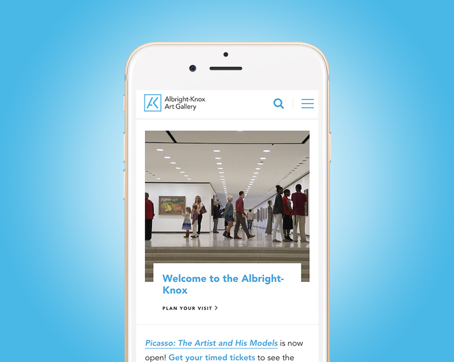Albright-Knox Website
